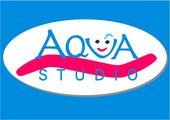 "Vaizdo rezultatas pagal užklausą ""aqua studio logo"""